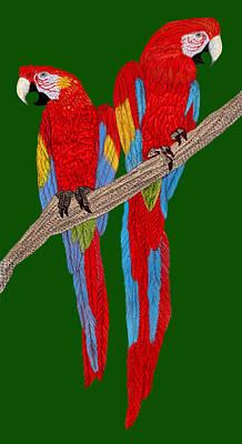Digital Art - Two Scarlet Macaw by Walter Colvin