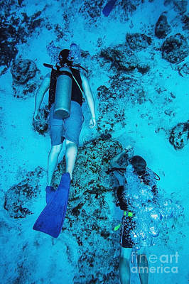 Two Scuba Divers Swimming_ Cozumel, Mexico Art Print