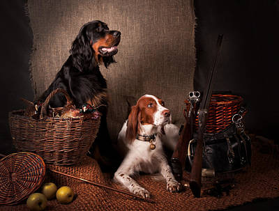 Irish Setter Photograph - Two Setters... by Tanya Kozlovsky