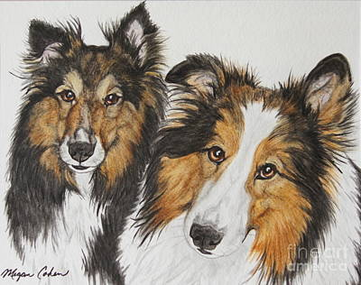 Wall Art - Painting - Two Shelties by Megan Cohen