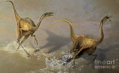Ostrich Digital Art - Two Struthiomimus Chasing Each Other by Jan Sovak