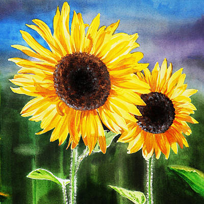 Sunflowers Royalty-Free and Rights-Managed Images - Two Suns Sunflowers by Irina Sztukowski