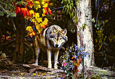 Wolves Photograph - Two Timber Wolves by Les Palenik