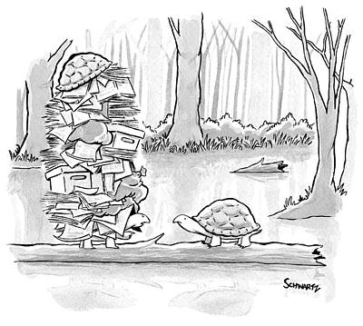 Two Tortoises Speak. One Has A Large Number Art Print by Benjamin Schwartz