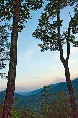 Asheville Nc Photograph - Two Trees And A Valley by Mela Luna