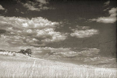 Clouds Over Pasture Photograph - Two Trees In A Grassy Field With A Cloudy Sky In Sepia by Kim M Smith