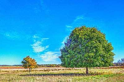 Photograph - Two Trees On The Prairie by Roger Passman