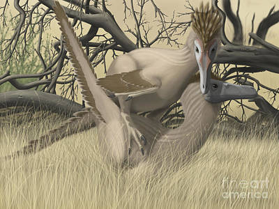 Two Velociraptors During Mating Season Print by Michele Dessi