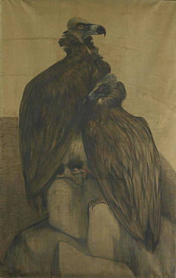 Vulture Drawing - Two Vultures, Theo Van Hoytema by Litz Collection