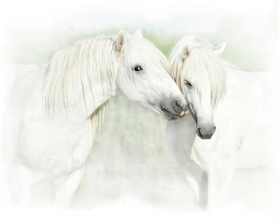 Rendition Photograph - Two White Horses Of Camargue, French by Sheila Haddad