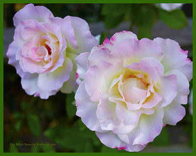 Digital Art - Two White Roses Border by Floyd Snyder