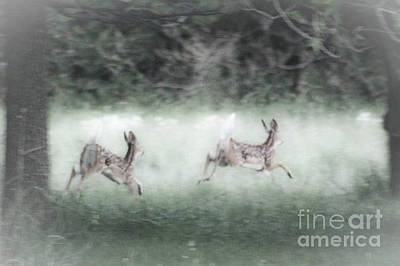 Art Print featuring the photograph Two Whitetail Fawns Running by Jim Lepard