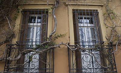 Photograph - Two Windows In Spring by Radoslav Nedelchev