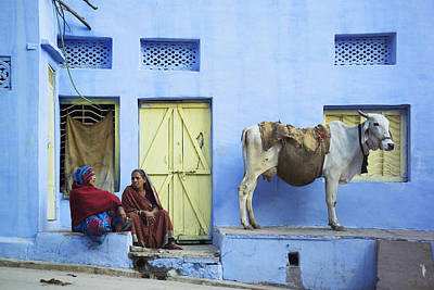 Two Women And A Cow Sitting Outside Of Art Print