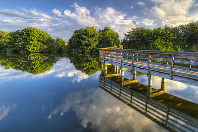 Delray Photograph - Two Worlds At Wakodahatchee by Debra and Dave Vanderlaan