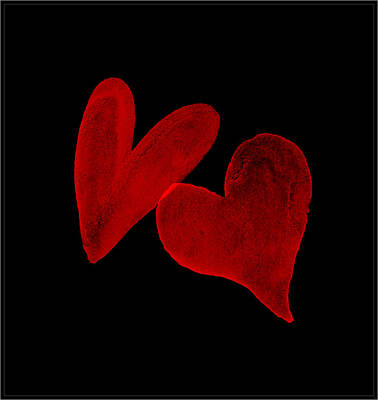 Digital Art - Two Wounded Hearts... by Tim Fillingim