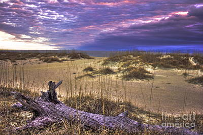 Best Ocean Photograph - Forbidden Sunrise Tybee Island Driftwood Sea Oats Dunes by Reid Callaway