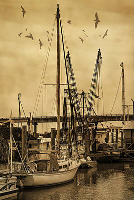 Roaring Red - Tybee Island Shrimp Boats by Priscilla Burgers