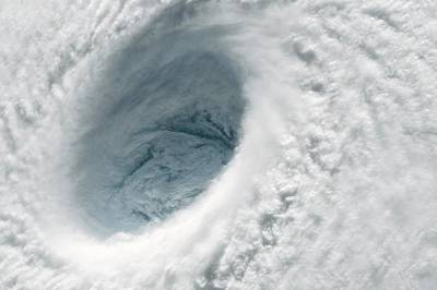21st Century Photograph - Typhoon Maysak by Nasa