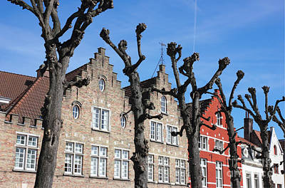 Typical Bruges Facades Art Print