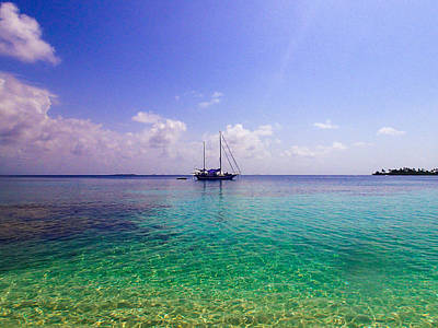 Photograph - Typical Caribbean by Tyler Lucas