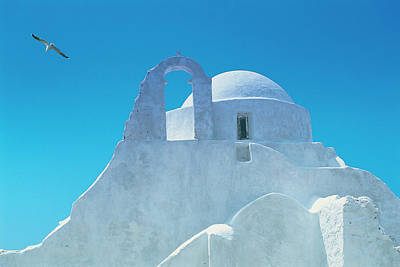 Flying Seagull Photograph - Typical Greek Architecture, Mykonos by Peter Adams