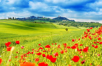 Typical Landscape Of Tuscany Art Print by Gehringj