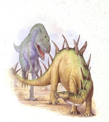Animals Photograph - Tyrannosaur Chasing Chialingosaurus by Deagostini/uig