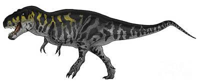 Triassic Digital Art - Tyrannosaurus Rex, A Large Predator by Vitor Silva