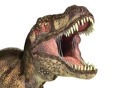 Prehistorical Photograph - Tyrannosaurus Rex Dinosaur by Leonello Calvetti