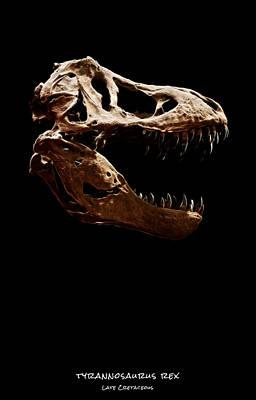 Photograph - Tyrannosaurus Rex Skull 1 by Weston Westmoreland