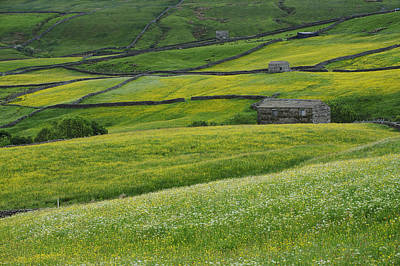 Uk, England, Yorkshire, Yorkshire Dales Print by Tips Images