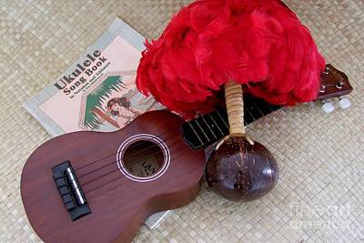 Ukulele Ipu And Songbook Art Print by Mary Deal