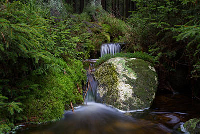 Photograph - Ulrichswasser, Harz by Andreas Levi