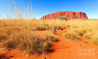 Uluru Photograph - Central Australia by Bill  Robinson