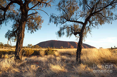 Uluru Photograph - Uluru by Matteo Colombo