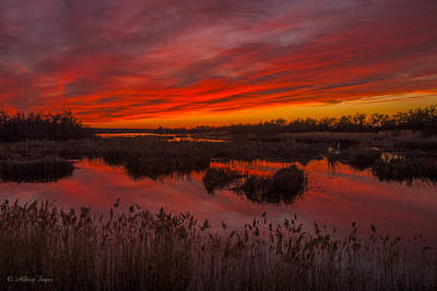 Photograph - Umatilla Refuge Sunset  -  150218a-226 by Albert Seger