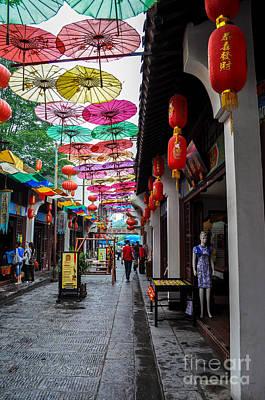 Lady Bug - Umbrella Street by Matt Malloy