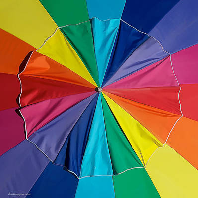 Photograph - Umbrella Top by Britt Runyon