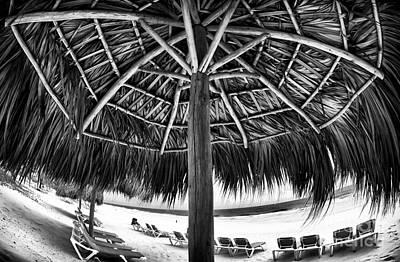 Photograph - Umbrella View by John Rizzuto
