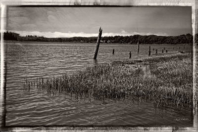 Photograph - Umpqua River Pilings by Mick Anderson