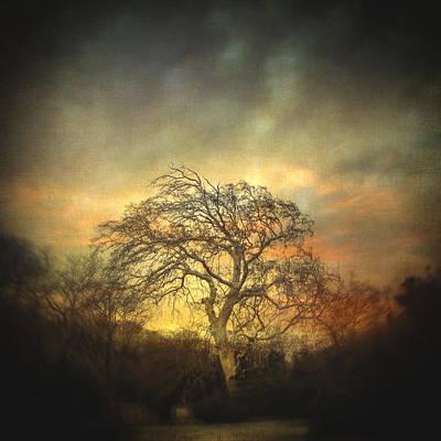 Photograph - Un Dernier Crepuscule by Taylan Apukovska