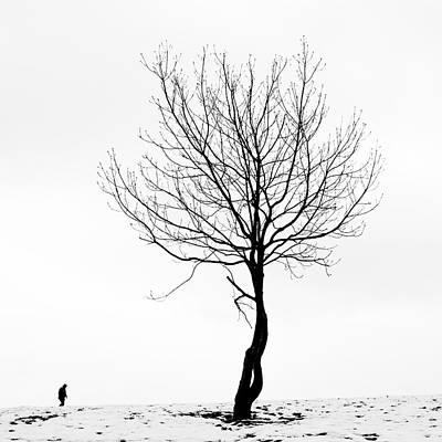 Photograph - Un Paseo Por Arraiz by Miguel Angel Samos Lucena