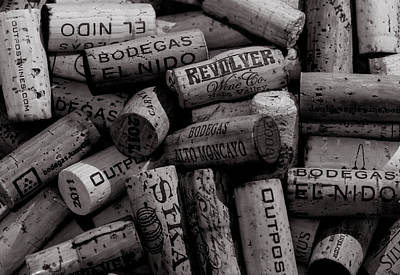 Italian Wine Photograph - Uncorked  by William Huchton