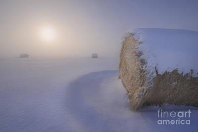 Under A Blanket Of Snow Art Print