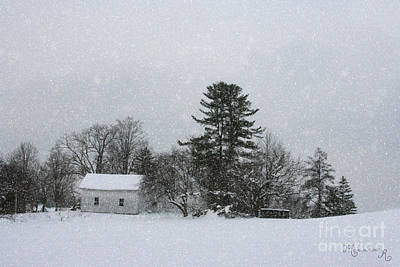 Photograph - Under A Blanket Of Snow by Mariarosa Rockefeller