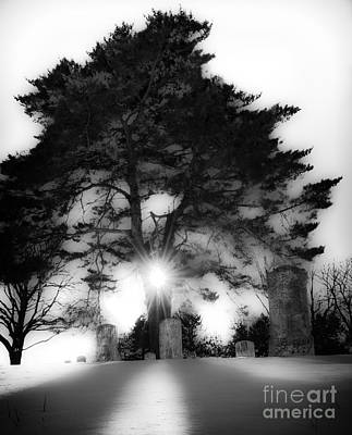 Photograph - Under A Cold Sun by Michael Arend