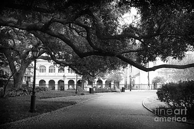 Photograph - Under A Tree In Jackson Square Mono by John Rizzuto