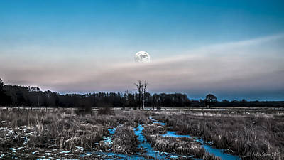 Under Cold Moonlight In Blue Art Print