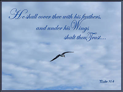 Christian Verse Photograph - Under His Wings by Larry Bishop